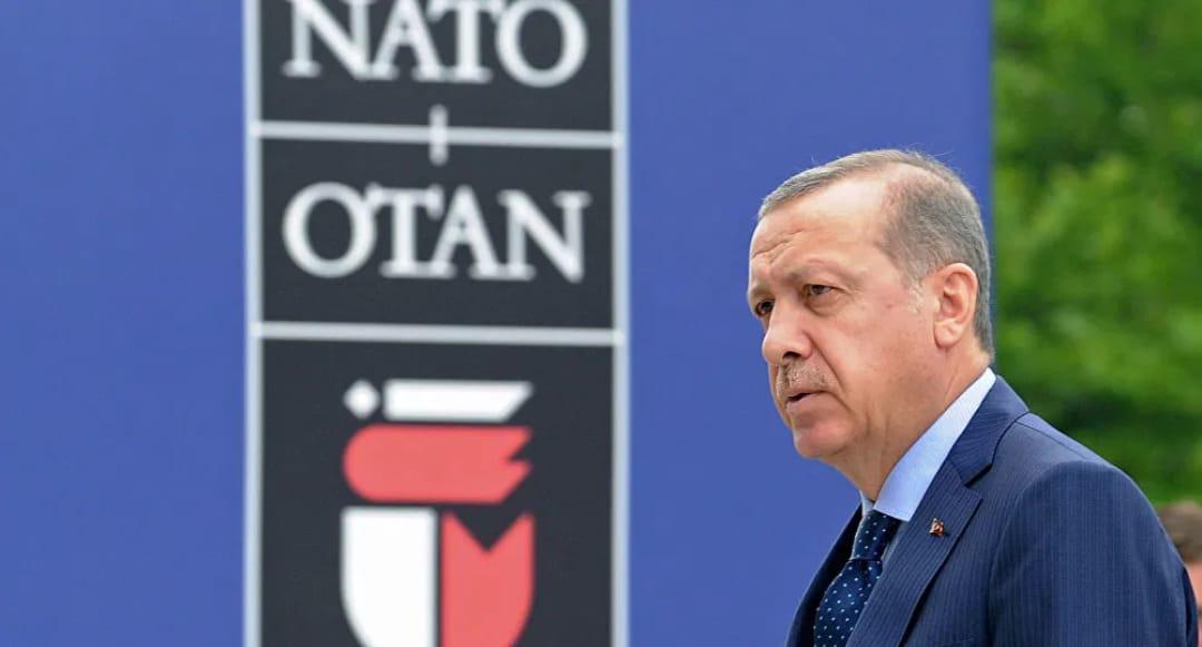 europa turchia curdi volonta impotenza blocco studentesco siria casapound italia