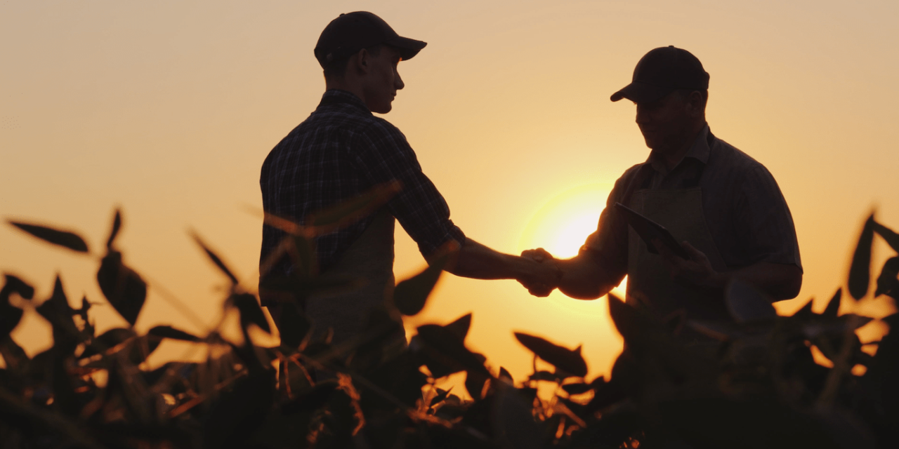 RIPRENDERSI L'AGRICOLTURA: UN FUTURO PER LA GIOVENTÙ ITALIANA